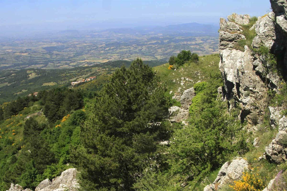 Monte Aquilaia