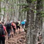 Escursione trekking Monte Amiata